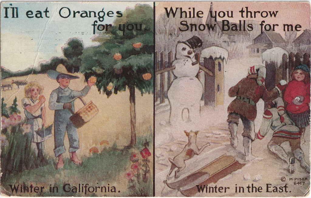 I'll Eat Oranges For You Winter in California Antique Postcard