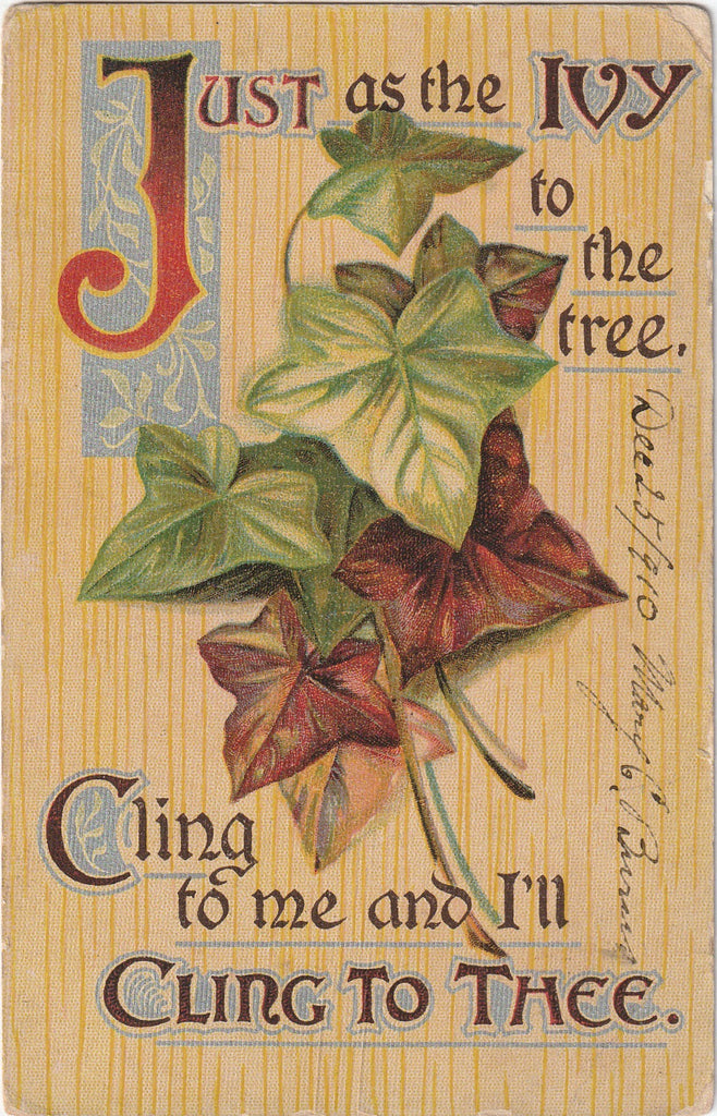Just As Ivy To The Tree Antique Postcard