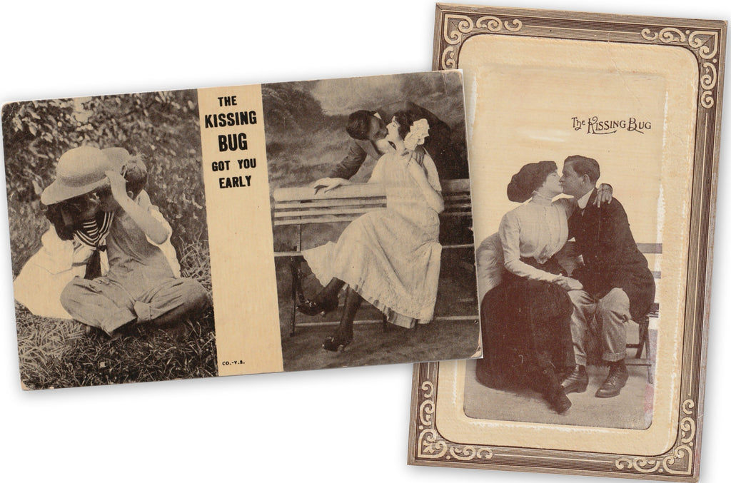 The Kissing Bug Postcards