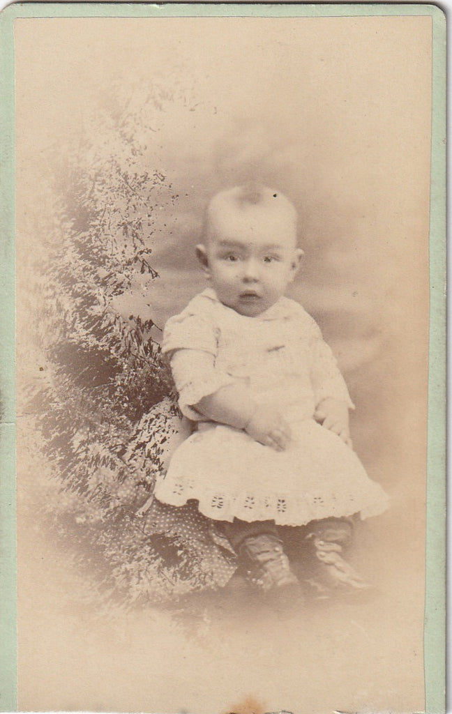 Hidden Mother St. Louis MO CDV