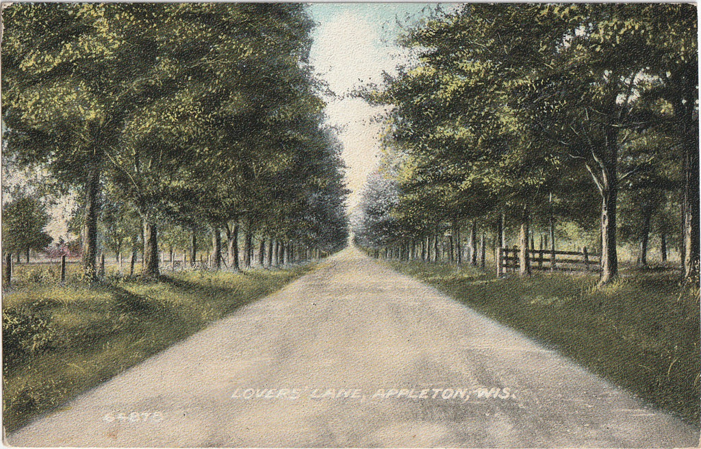Lover's Lane Appleton Wisconsin Postcard