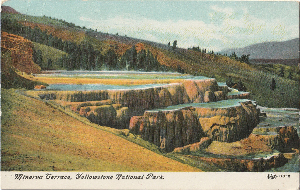Minerva Terrance Yellowstone National Park Postcard