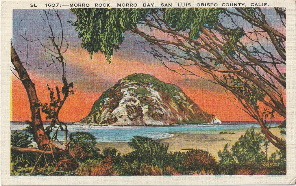 Morro Rock, Morro Bay - San Luis Obispo County, California - Postcard, c. 1920s