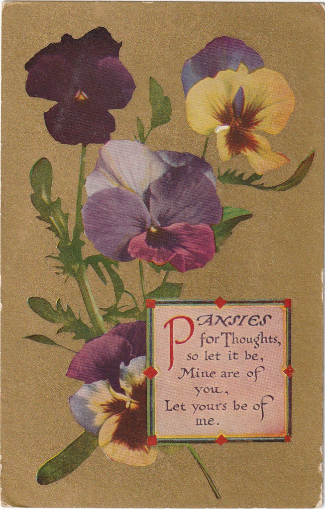 Pansies for Thoughts Postcard