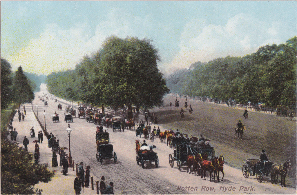 Rotten Row Hyde Park New York Postcard