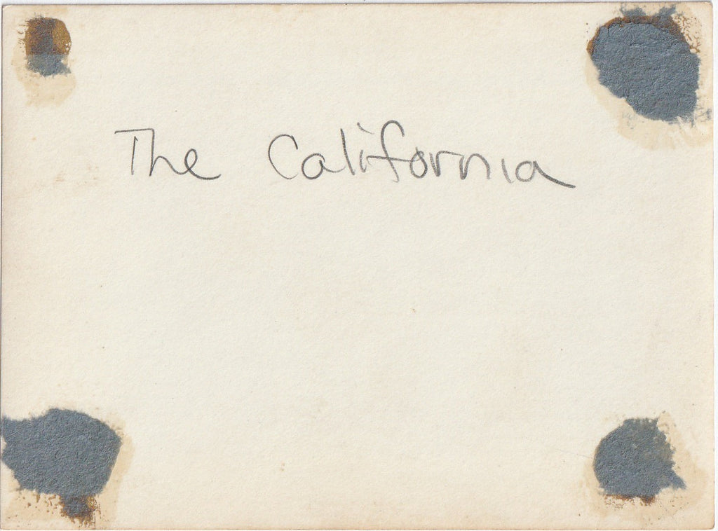 S. S. California Panama Pacific Line Photograph Back
