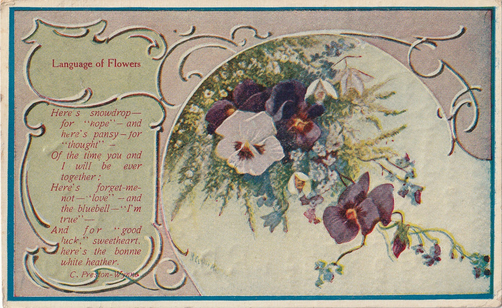 Snowdrop For Hope Language of Flowers Antique Postcard