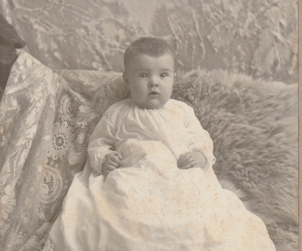 Victorian Baby Hidden Mother Cabinet Photo Close Up 2