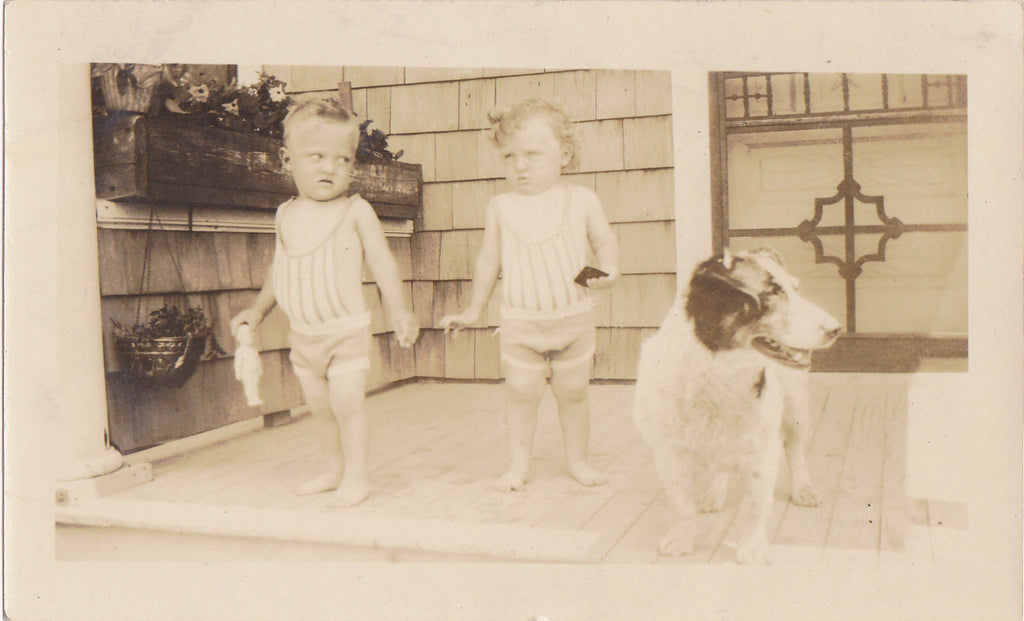 Toddle Twins and Dog Vintage Snapshot