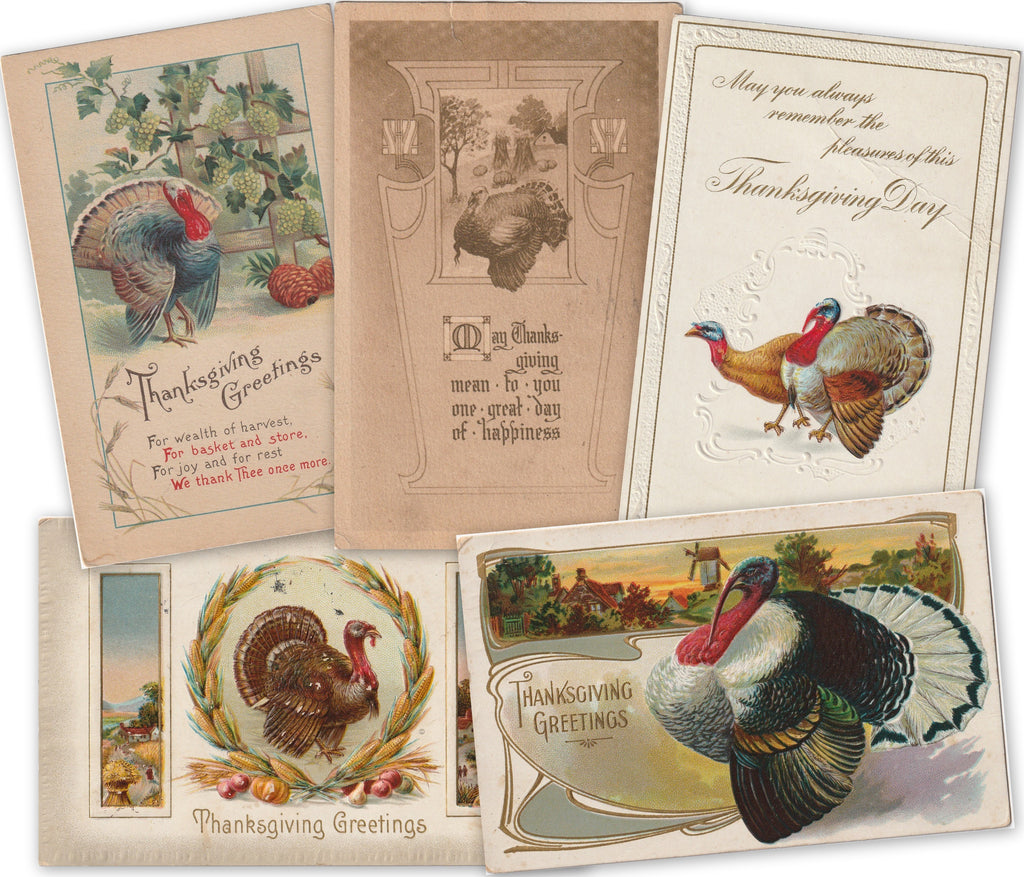 Thanksgiving Day Greetings Postcards