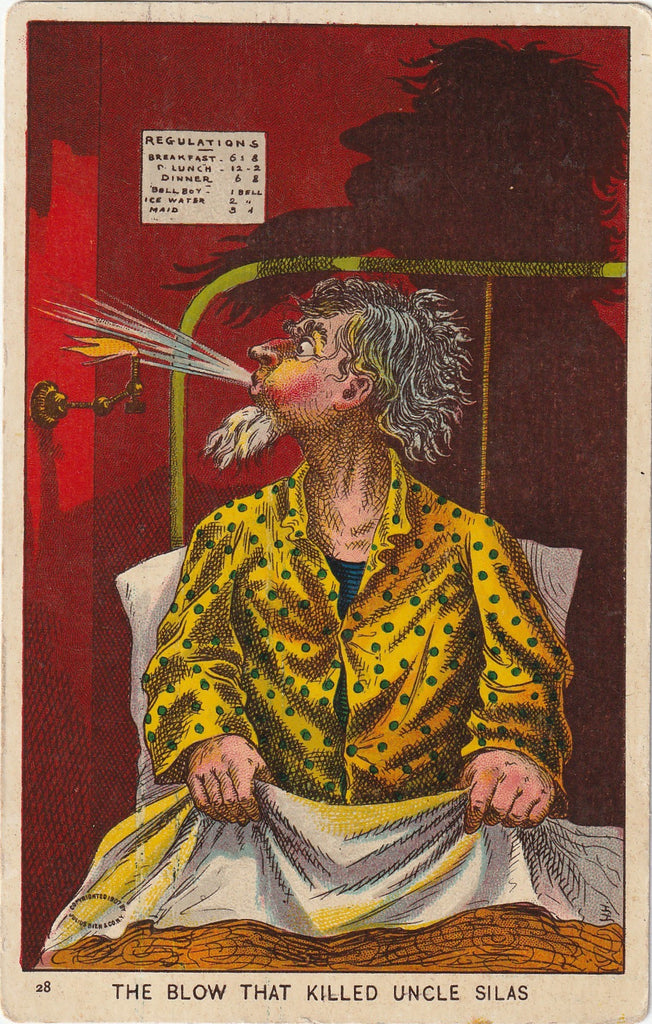 The Blow That Killed Uncle Silas Postcard