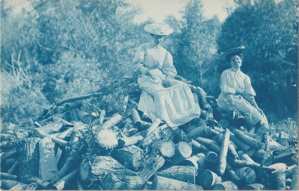 Top of the Wood Pile Cyanotype RPPC Antique Photo