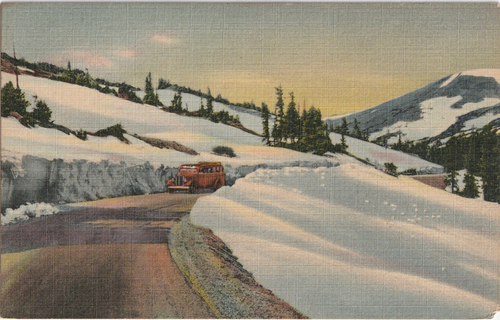 Trail Ridge Road Rocky Mountain National Park Vintage Postcard