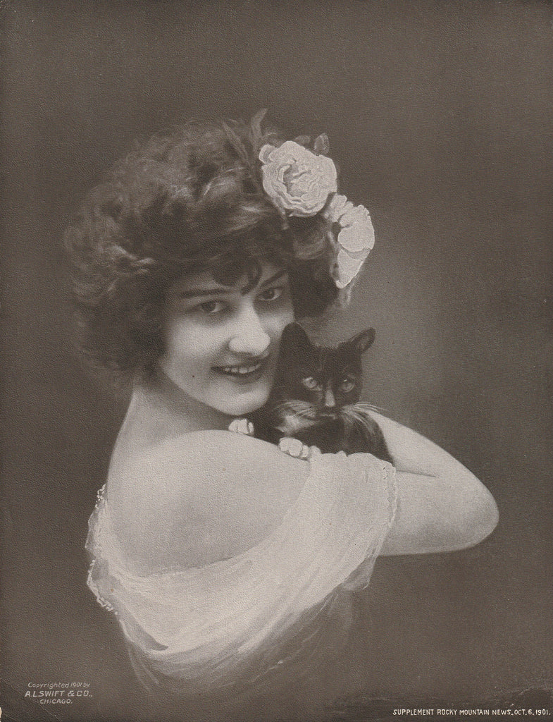 Edwardian Beauty and Cat A L Swift Antique Print