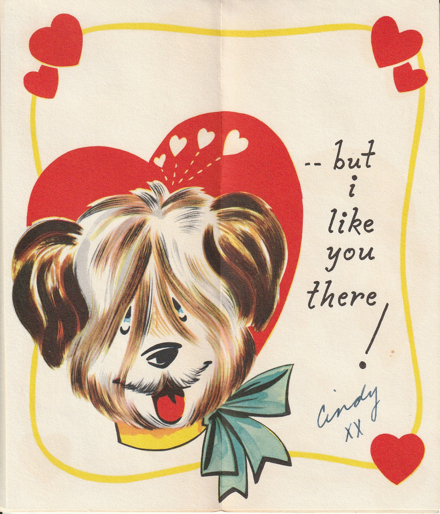 Valentine You Get in My Hair Sheepdog Card Inside