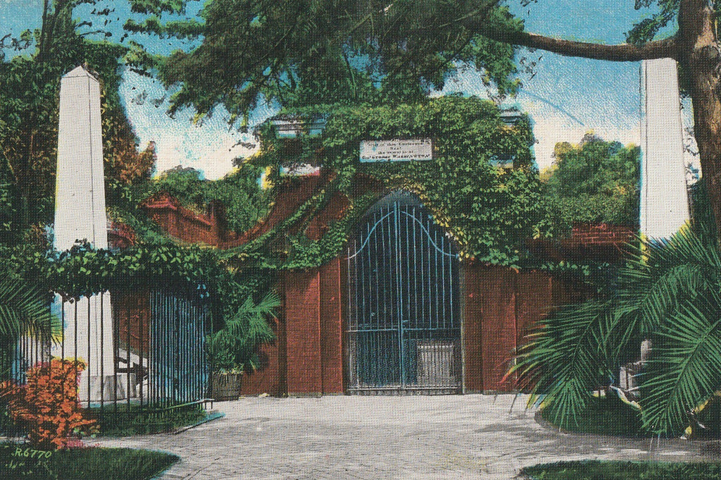 Washington's Tomb Mt Vernon VA Antique Postcard Close Up