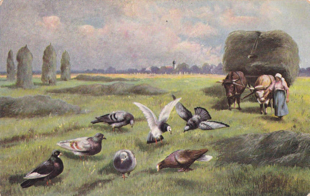 Monster Pigeons- 1900s Antique Postcard- Strange Perspective- Giant Birds- Weird- Strange- German American Novelty Art- Unused