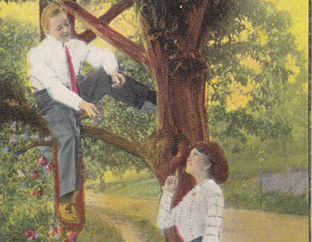 Love Nest- 1910s Antique Postcard- Edwardian Romance- Climbing Tree- Love Art Comic- Nesting Couple- Used