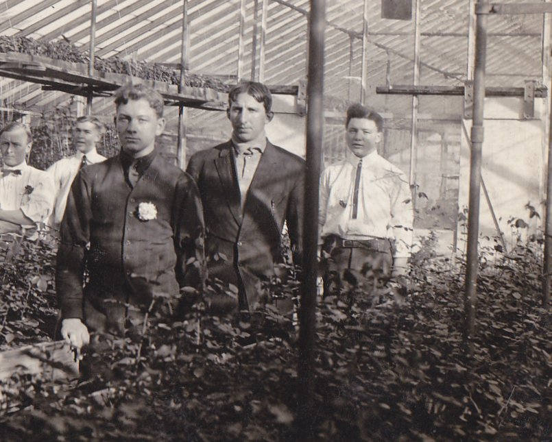 Hothouse Dandies- 1900s Antique Photograph- Edwardian Greenhouse- Plant Nursery- Found Photo- AZO RPPC- Real Photo Postcard