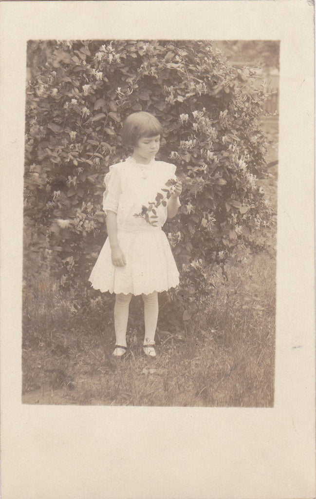 Your Little Friend Elma- 1910s Antique Photograph- Honeysuckle- Edwardian Child- Found Photo- AZO RPPC- Real Photo Postcard