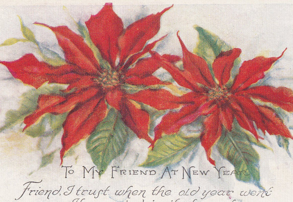 To My Friend at New Year- 1920s Antique Postcard- Poinsettia Flowers- Friendship- Unused