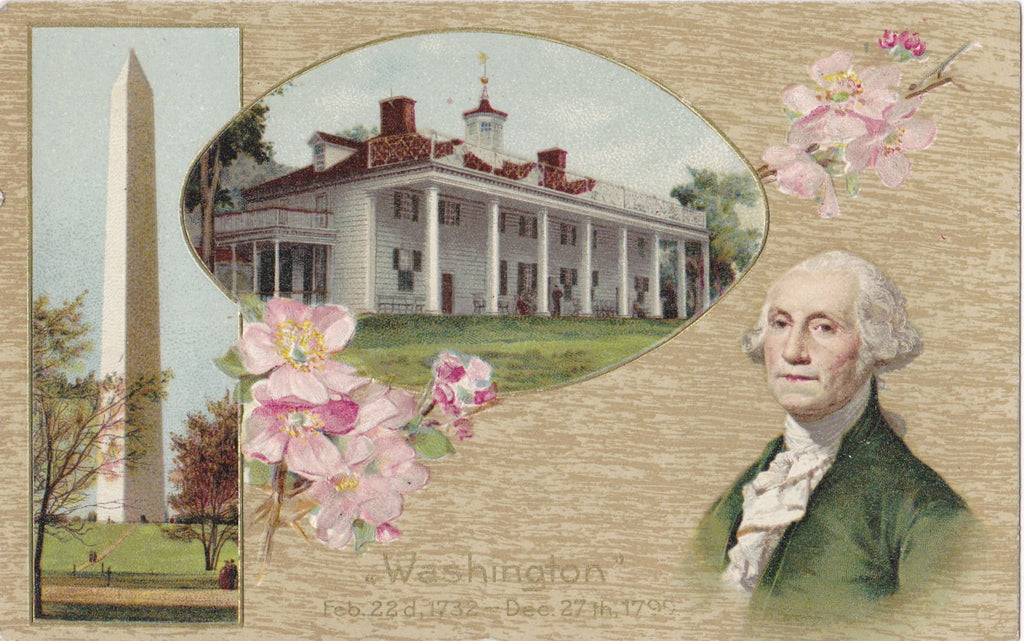 Washington's Birthday- 1910s Antique Postcard- February 22- George Washington Monument- Cherry Blossoms- American President- Used