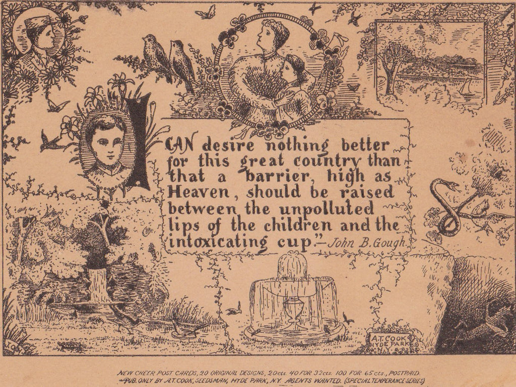 The Intoxicating Cup- 1900s Antique Postcard- New Cheer- A T Cook- Temperance Series- John B Gough- Pre Prohibition- History Ephemera