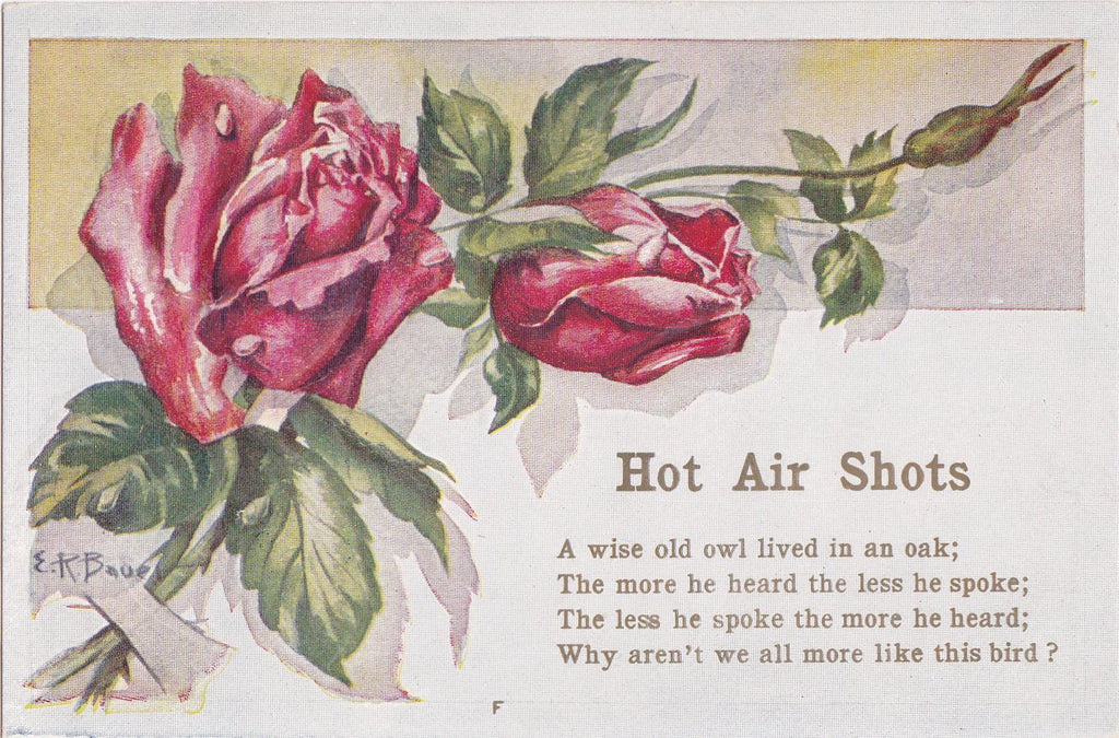 Wise Old Owl- 1910s Antique Postcard- Hot Air Shots- Edwardian Flowers- Roses- Motto Poem Quote- E R Bauer- Unused
