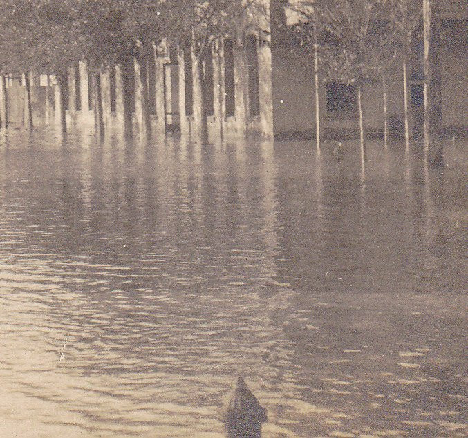 Drowned Town- 1910s Antique Photograph- Real Photo Postcard- Flooded Streets- Flood Waters-  Natural Disaster- Cyko RPPC