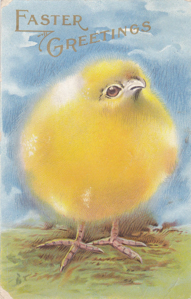 Ridiculously Cute & Fluffy-  1910s Antique Postcard- Edwardian Easter Decor- Funny Easter Chick- Used