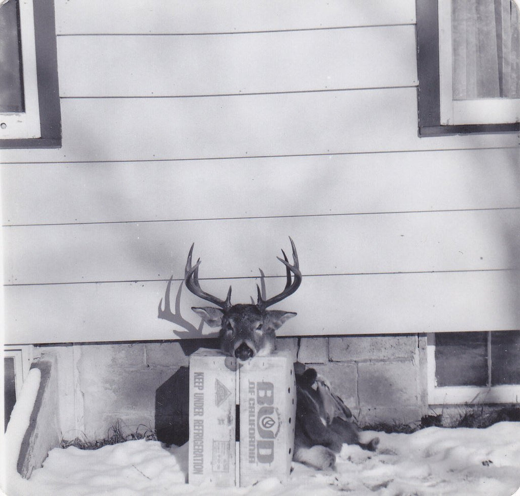 Deerstalker- 1950s Vintage Photographs- SET of 2- Hunter and Kill- Big Stag- Deer Antlers- Gruesome Souvenir- Found Photos- Creepy Snapshots