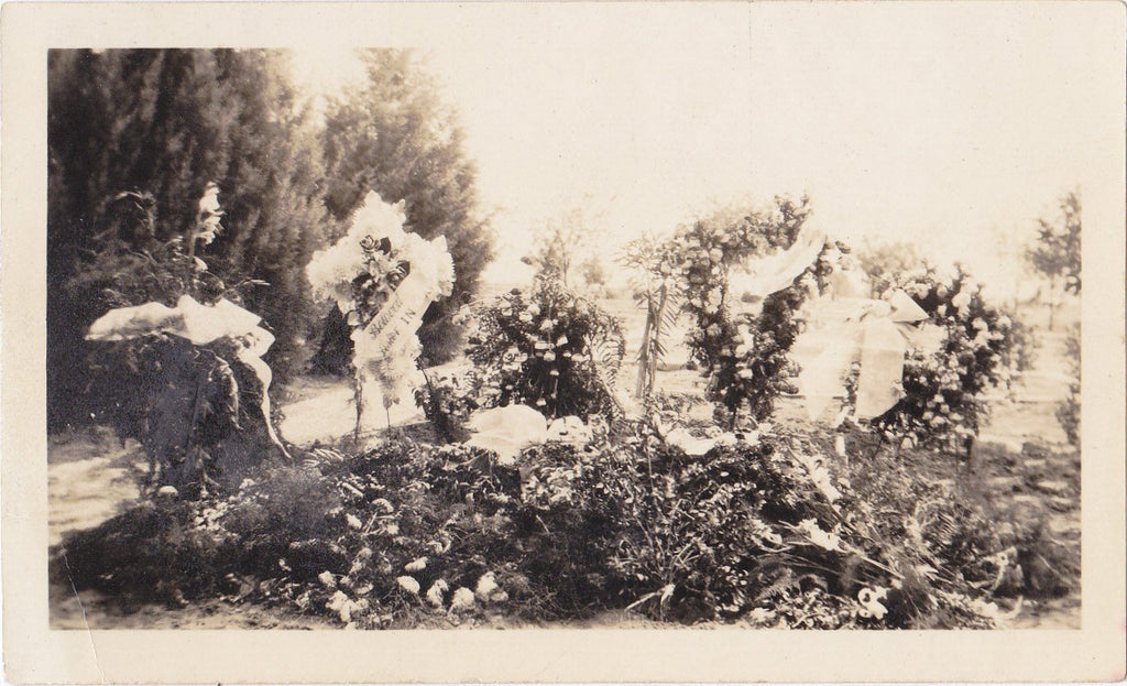 Beloved Aster- 1920s Antique Photograph- Funeral Flowers- Memorial Photo- Mourning- Graveyard- Cemetery Snapshot
