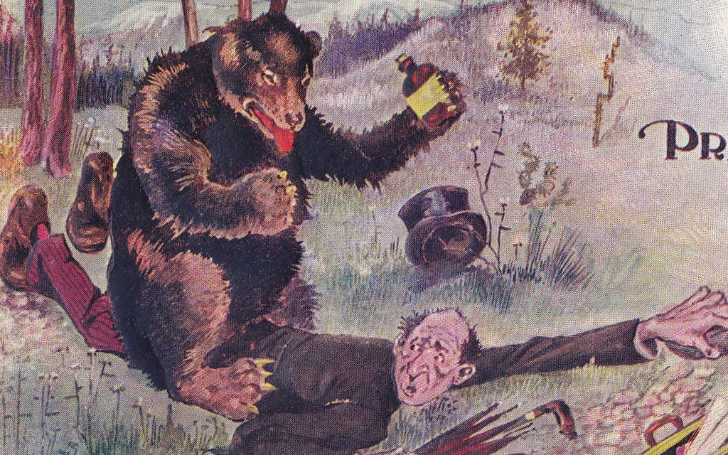 Pressed For Time- 1900s Antique Postcard- Can't Write- Grizzly Bear- Edwardian Humor- Art Comic- H H Tammen- Embossed- Used