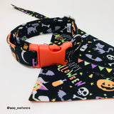 Collar Happy Halloween M