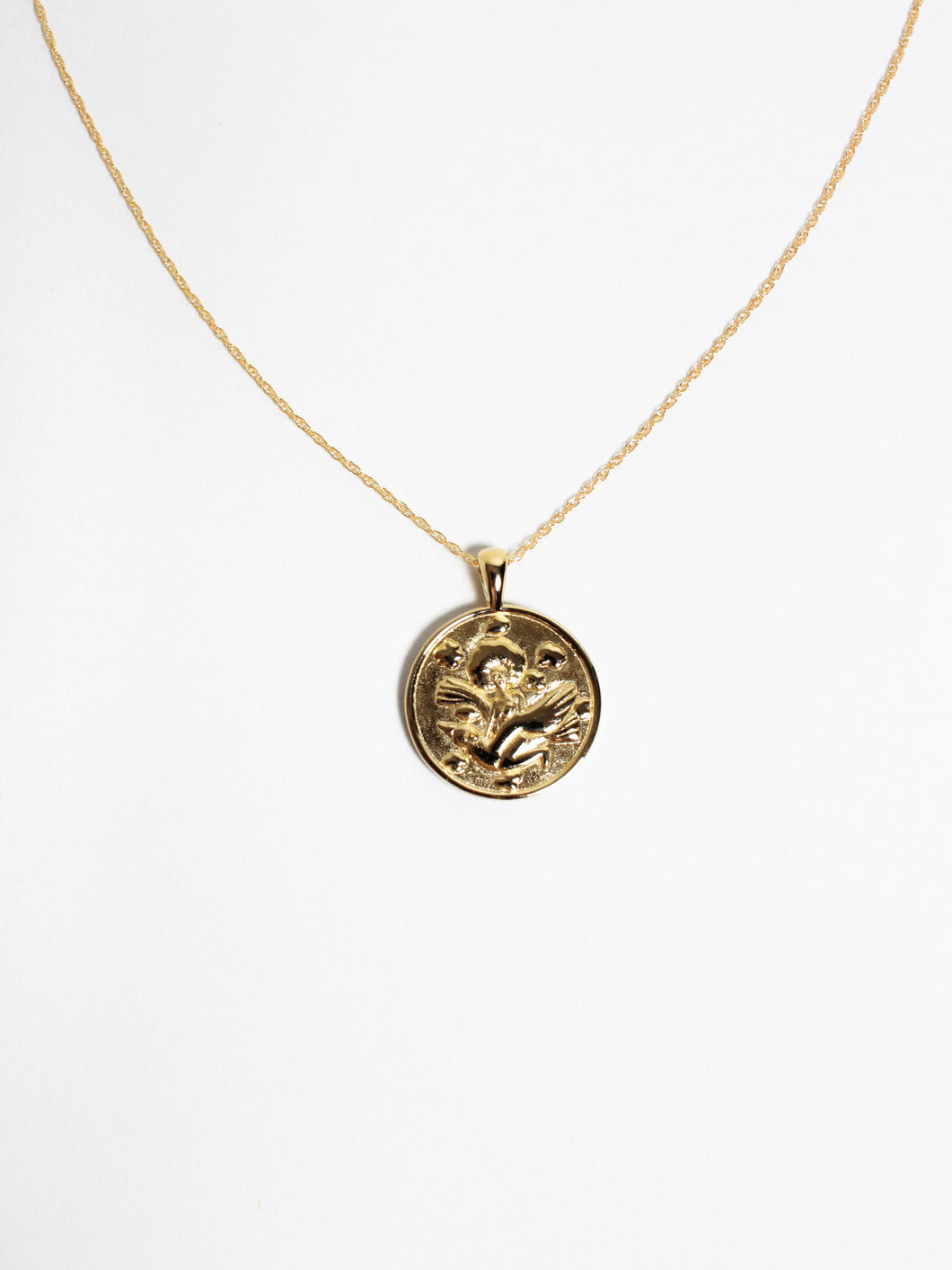 Anywhere Anywhere Medallion Necklace