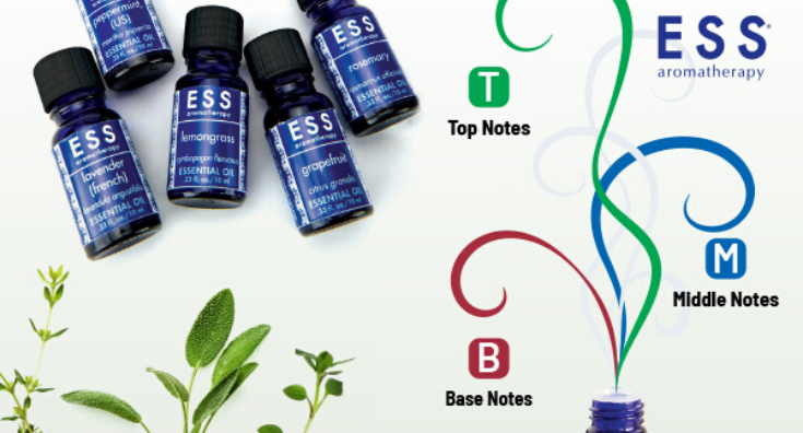 Essential Oils: What's the Difference Between Top, Middle, and Base Notes?