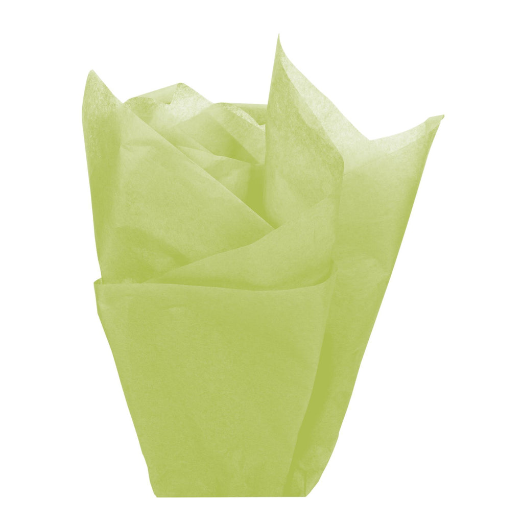 Bags, Ribbons & Tissue Aloe Tissue Paper / 20in x 30in