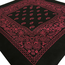 Load image into Gallery viewer, Black & Pink Floral Paisley
