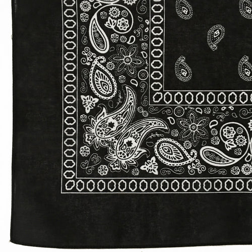 Black & White Floral Paisley