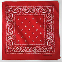 Load image into Gallery viewer, Red Paisley Bandana