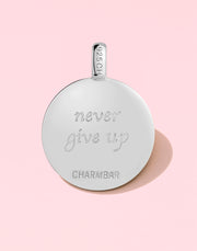 """Never Give Up"" Hummingbird Gift Set"