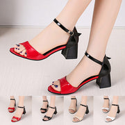Mixed Colors Buckle Square Heel