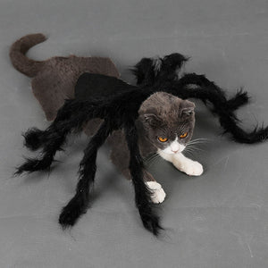 Tarantula Pet Costume (for Dogs + Cats)