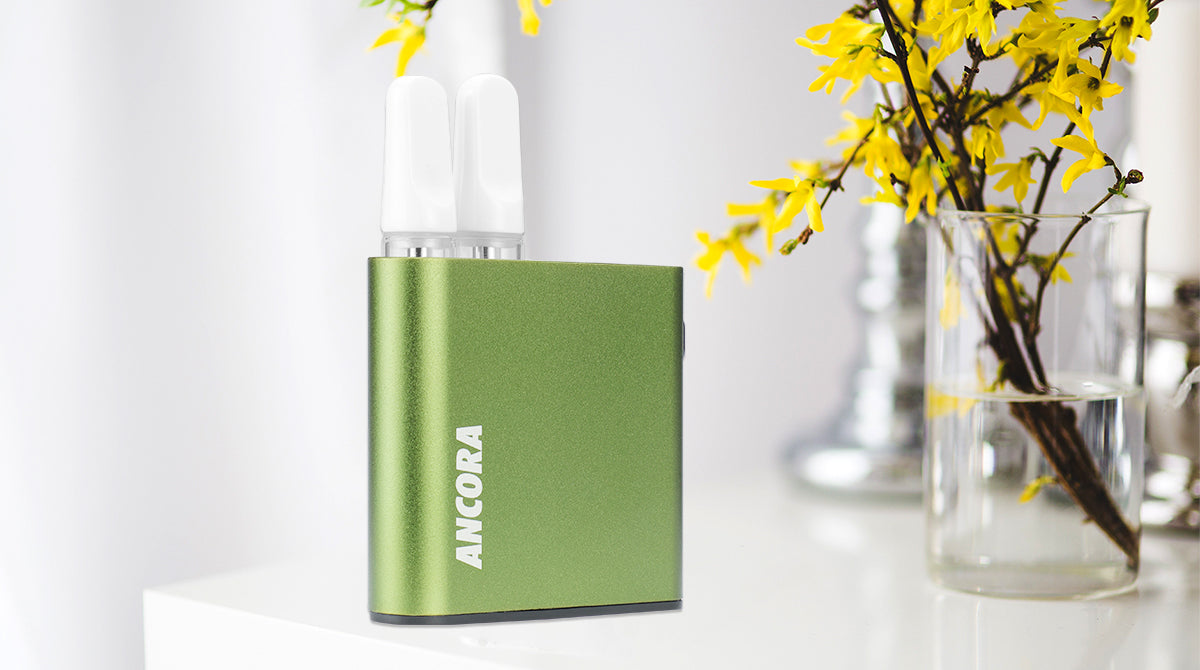 Ancora Dual Mod Review