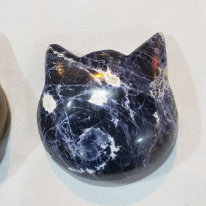 Sodalite cat head - WHYTE QUARTZ