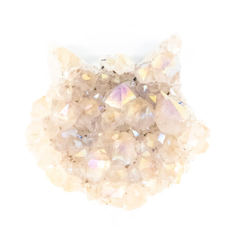 Large Titanium Coated White Amethyst Druzy Cat Head - WHYTE QUARTZ