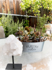 Large quartz cluster on metal base image next to lush succulents and greenery