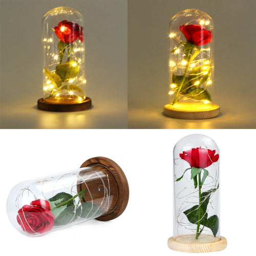 Festival Birthday Gift Romantic Simulation Rose Glass Cover Led Micro Landscape