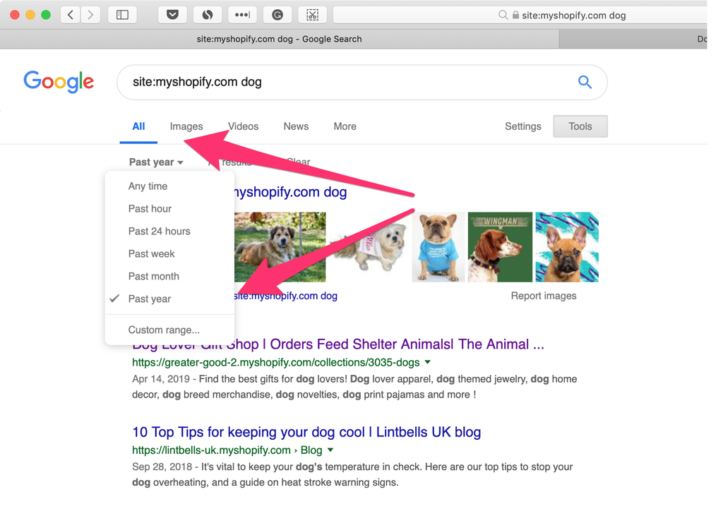 using search filter of google