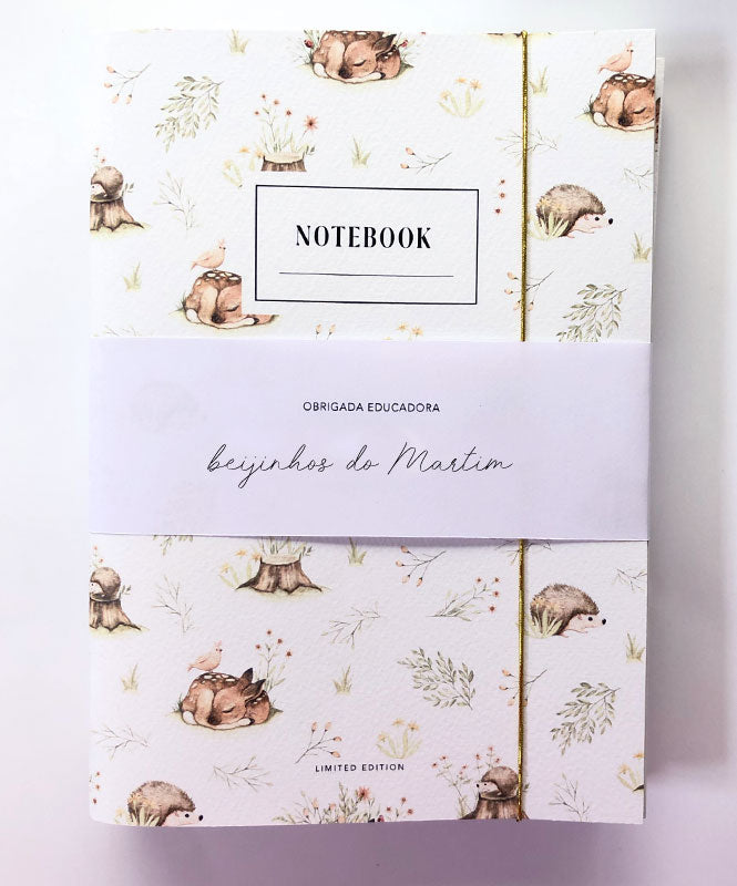 Professor/Educador Notebooks Pack